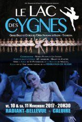 Le_lac_des_cygnes-2017-mini